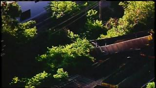 Train derails above busy West Allis street - Video