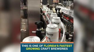 Big Storm Brewery in Clearwater offers delicious beer and burgers - Video