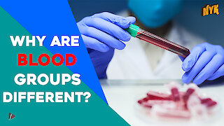 Why Are Blood Groups Different