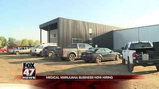 Medical marijuana job fair today - Video