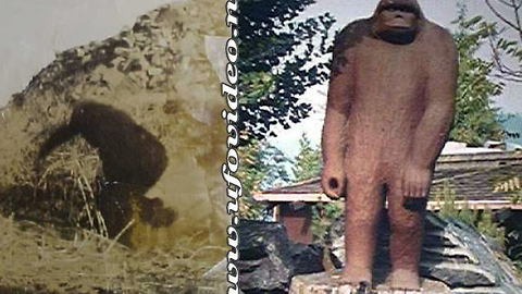 "Sasquatch Statues: Made From ""True Eyewitness Accounts"""