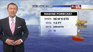 Florida's Most Accurate Forecast with Greg Dee on Tuesday, June 19, 2018 - Video