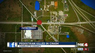 Pedestrian Killed in Crash - Video