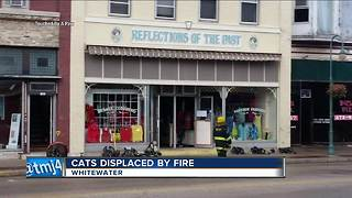 Fire damages restaurant, apartments, animal shelter in Whitewater - Video