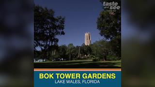 Bok Tower Gardens in Lake Wales offers one of the best views in Florida - Video
