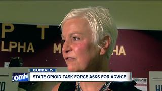 Senate task force sources community leaders on ways to reduce opioid deaths - Video