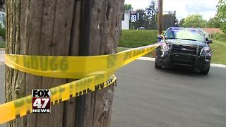 Teen stabbed, killed in Ionia - Video