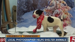 Celebrate Tennessee: Pics For Pets - Video