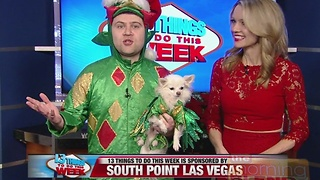 13 Things To Do 12/22/16 - Video