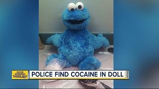 Me want cocaine? Drugs found inside Cookie Monster doll in the Florida Keys - Video