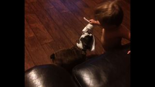 The Cutest Puppy vs Baby Tug of War