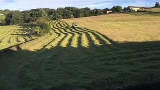Timelapse Video of Farmer Cutting Grass - Video