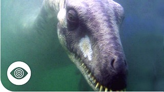 Is The British Government Hiding The Loch Ness Monster? - Video