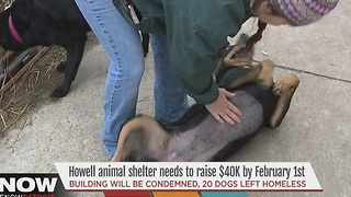 Howell animal shelter needs to raise money - Video