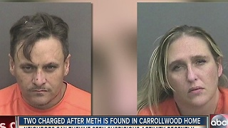 Two charged after Meth is found in Carrollwood home - Video