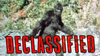 Bigfoot | Declassified - Video