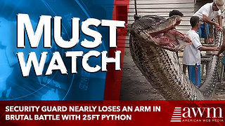 Security guard nearly loses an arm in brutal battle with 25ft python - Video