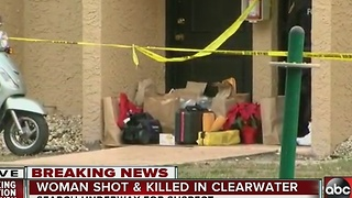 Clearwater police investigate homicide - Video