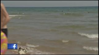 Whitefish Dunes State Park celebrates 50 years - Video