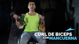 Curl de Biceps con Mancuernas - Video