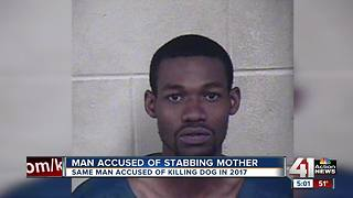 Accused dog killer charged with stabbing his mom