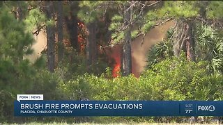 Brush fire causes 40 homes to be evacuated