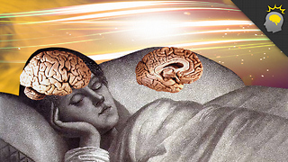 Stuff to Blow Your Mind: Epic Science: Unihemispheric Sleep - Video