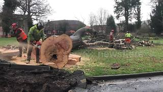 Storm Eleanor clean-up begins in Welsh town - Video