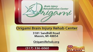 Origami Brain Injury Rehab Center - 1/17/17 - Video