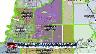 The aftermath of Pasco Co. schools rezoning - Video