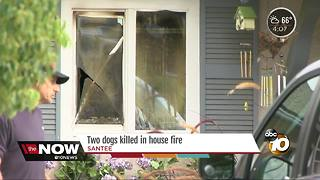 Two dogs killed in house fire in Santee - Video