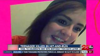 Teenager killed in hit-and-run - Video