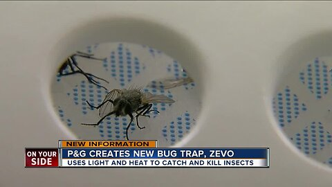 Zevo uses light and heat to catch and kill insects