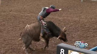 Tucson Rodeo is opening on Saturday, but the animals have arrived