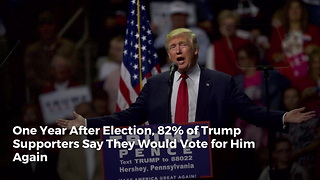 One Year After Election, 82% of Trump Supporters Say They Would Vote for Him Again - Video