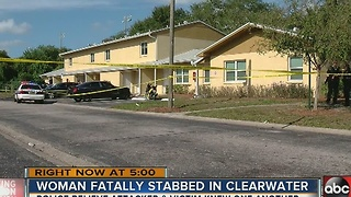 Woman dies after being stabbed in Clearwater - Video