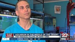 An aquarium in the middle of the desert? - Video