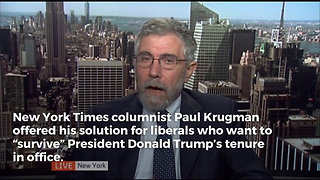 Paul Krugman Has An Interesting Idea For Liberals Looking For a Way to 'Survive' the Trump Era - Video