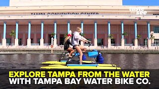 Tampa Bay Water Bike Company along the Riverwalk | Giant Adventure