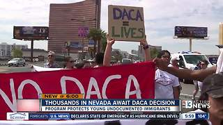 Thousands in Nevada waiting for DACA decision - Video