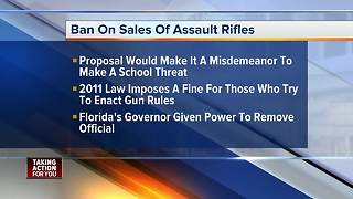 Hillsborough County Commissioner hoping to ban sale of assault style weapons