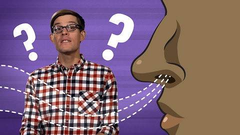 S1 Ep27: How Many Smells Can You Smell?