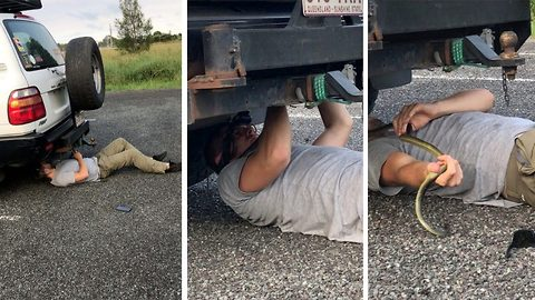 Give me a brake: Snake rescuer stunned when trapped reptile falls on his face while under car