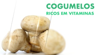 Cogumelos, abundantes em vitaminas. - Video