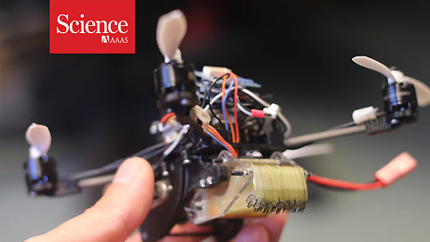 This tiny wasp-inspired drone can pull 40 times its own weight