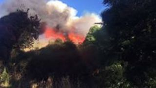 Bushfires Scorch More Than 600 Hectares Near Christchurch - Video