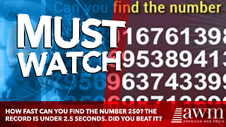 How Fast Can You Find The Number 250? The Record Is Under 2.5 Seconds. Did You Beat It? - Video