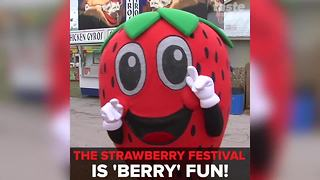 2018 Florida Strawberry Festival | Taste and See Tampa Bay - Video
