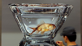 Time Lapse Video Of The Creation Of A Stunning Hyper-Realistic Goldfish Portrait - Video