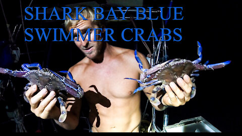 Shark bay catch and cook Crabs - Ep 15